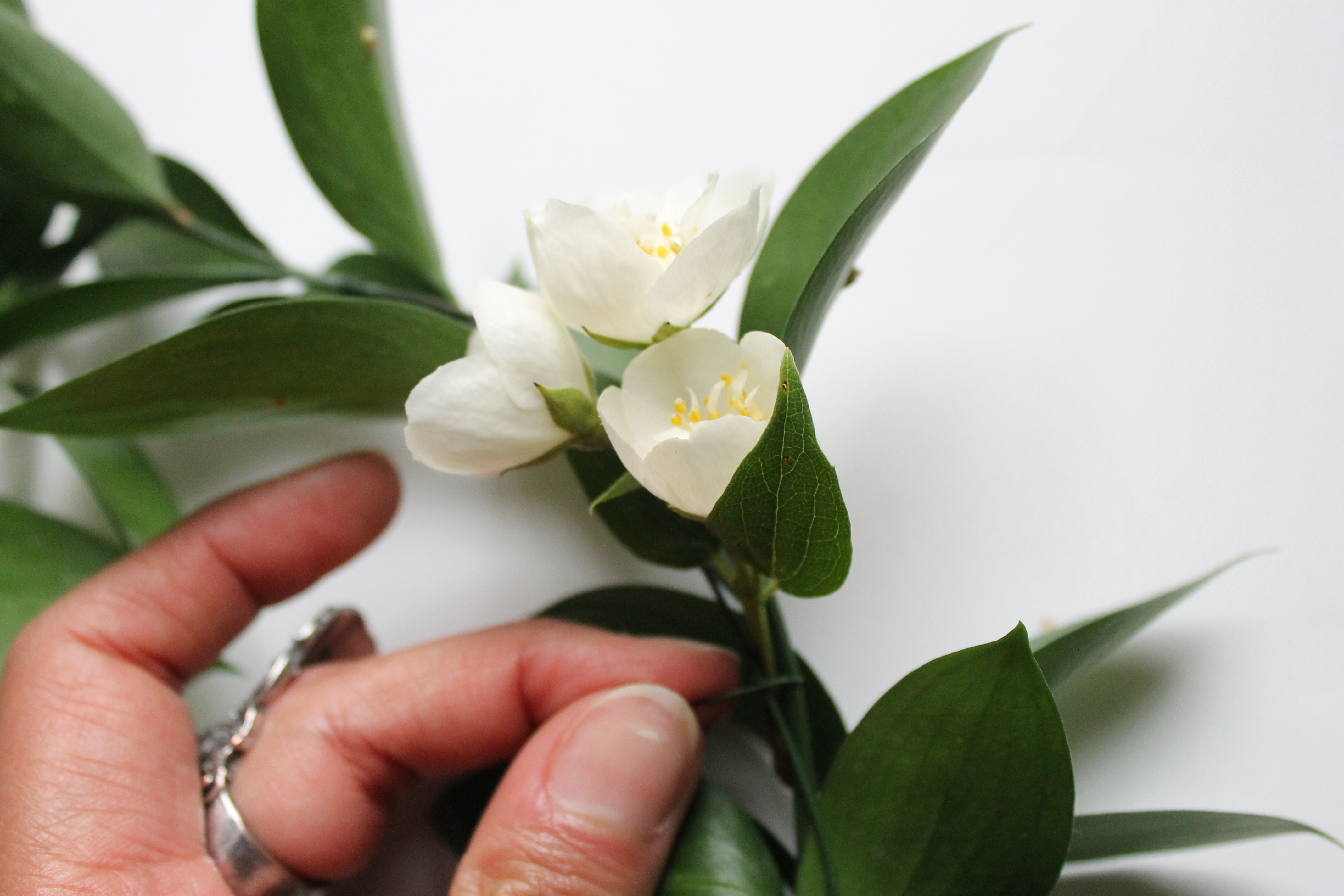 fixer fleurs