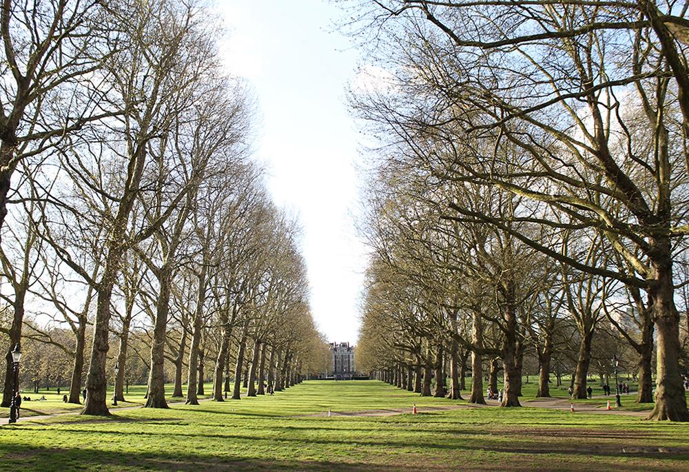 green-park-londres-2