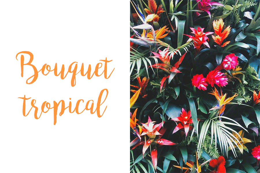 tendance-fleurs-tropicales