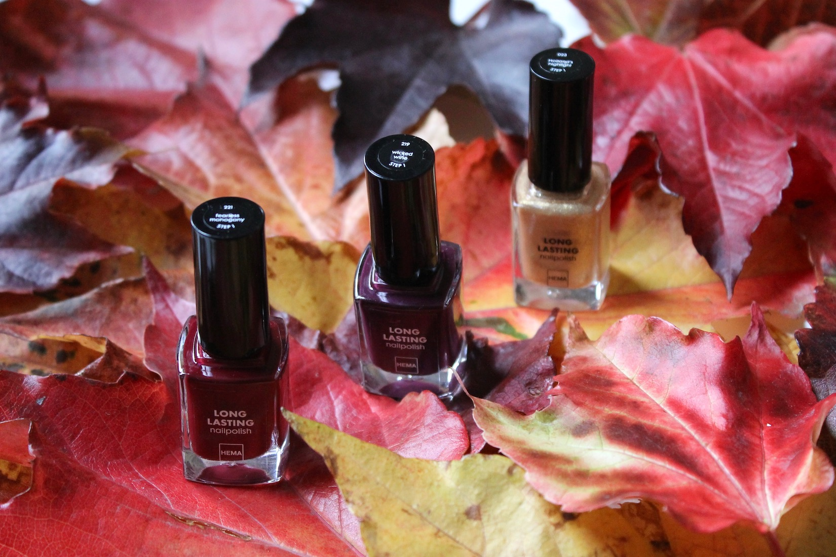 vernis-automne-hema
